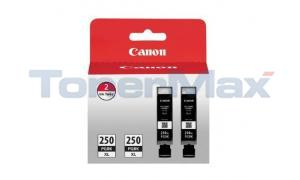 CANON PGI-250PGBKXL INK TANK PIGMENT BLACK TWIN PACK (6432B004)